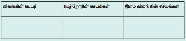 Samacheer Kalvi 4th Science Guide Term 3 Chapter 2 விலங்குகளின் வாழ்க்கை 7