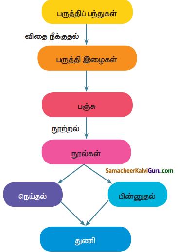 Samacheer Kalvi 5th Science Guide Term 1 Chapter 2 பருப்பொருள்கள் மற்றும் மூலப்பொருள்கள் 2