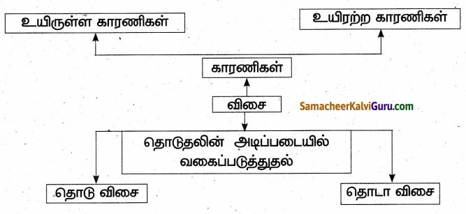Samacheer Kalvi 6th Science Guide Term 1 Chapter 2 விசையும் இயக்கமும் 95