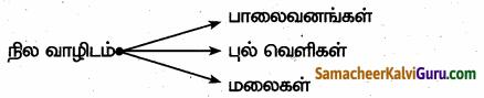 Samacheer Kalvi 6th Science Guide Term 1 Chapter 4 தாவரங்கள் வாழும் உலகம் 80