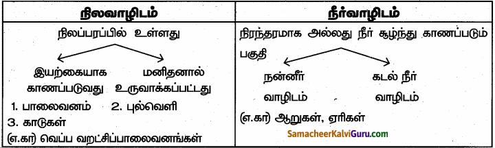 Samacheer Kalvi 6th Science Guide Term 1 Chapter 4 தாவரங்கள் வாழும் உலகம் 86