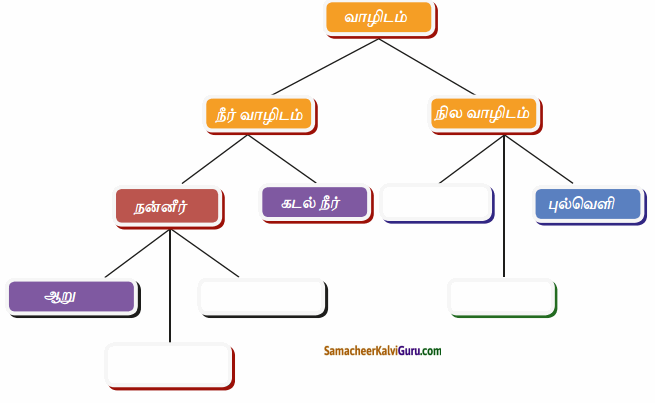 Samacheer Kalvi 6th Science Guide Term 1 Chapter 4 தாவரங்கள் வாழும் உலகம் 90