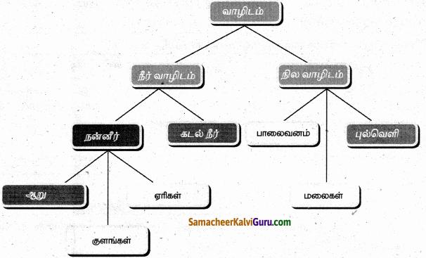 Samacheer Kalvi 6th Science Guide Term 1 Chapter 4 தாவரங்கள் வாழும் உலகம் 91