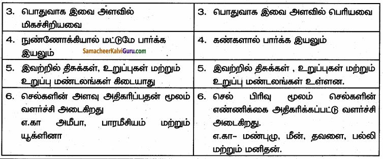 Samacheer Kalvi 6th Science Guide Term 1 Chapter 5 விலங்குகள் வாழும் உலகம் 81