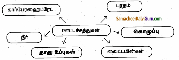Samacheer Kalvi 6th Science Guide Term 1 Chapter 6 உடல் நலமும் சுகாதாரமும் 82.1