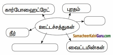 Samacheer Kalvi 6th Science Guide Term 1 Chapter 6 உடல் நலமும் சுகாதாரமும் 82