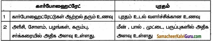 Samacheer Kalvi 6th Science Guide Term 1 Chapter 6 உடல் நலமும் சுகாதாரமும் 83