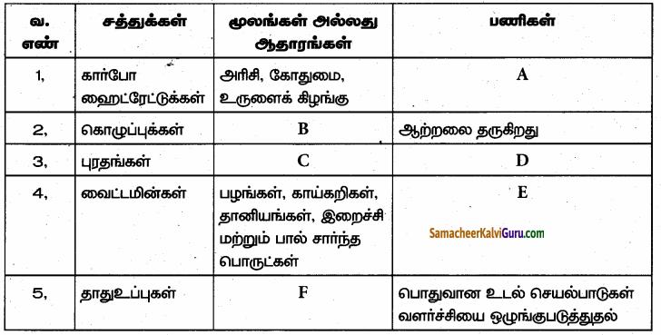 Samacheer Kalvi 6th Science Guide Term 1 Chapter 6 உடல் நலமும் சுகாதாரமும் 99