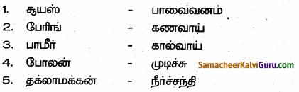 Samacheer Kalvi 6th Social Science Guide Term 3 Geography Chapter 1 ஆசியா மற்றும் ஐரோப்பா 90