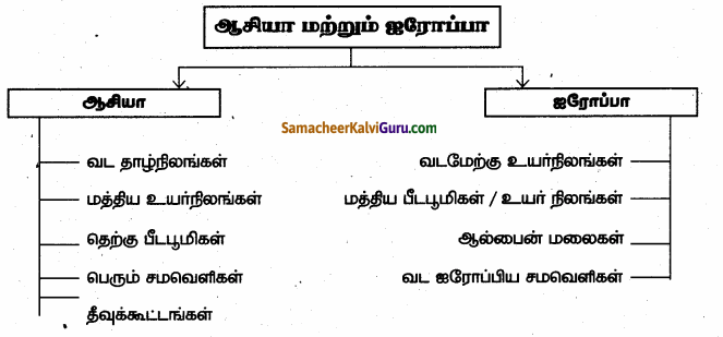 Samacheer Kalvi 6th Social Science Guide Term 3 Geography Chapter 1 ஆசியா மற்றும் ஐரோப்பா 99