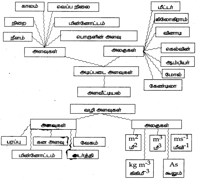 Samacheer Kalvi 7th Science Guide Term 1 Chapter 1 அளவீட்டியல் 22