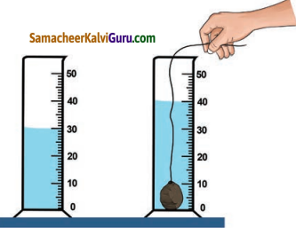 Samacheer Kalvi 7th Science Guide Term 1 Chapter 1 அளவீட்டியல் 7