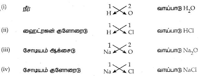 Samacheer Kalvi 7th Science Guide Term 1 Chapter 4 அணு அமைப்பு 10