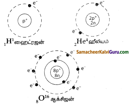 Samacheer Kalvi 7th Science Guide Term 1 Chapter 4 அணு அமைப்பு 11