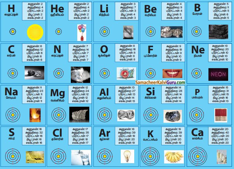 Samacheer Kalvi 7th Science Guide Term 1 Chapter 4 அணு அமைப்பு 14