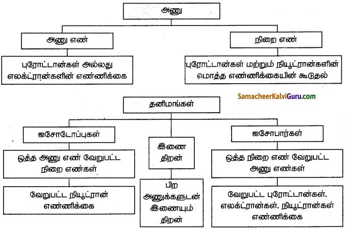 Samacheer Kalvi 7th Science Guide Term 1 Chapter 4 அணு அமைப்பு 16