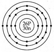 Samacheer Kalvi 7th Science Guide Term 1 Chapter 4 அணு அமைப்பு 6