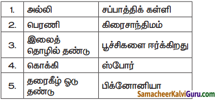 Samacheer Kalvi 7th Science Guide Term 1 Chapter 5 தாவரங்களின் இனப்பெருக்கம் மற்றும் மாற்றுருக்கள் 1
