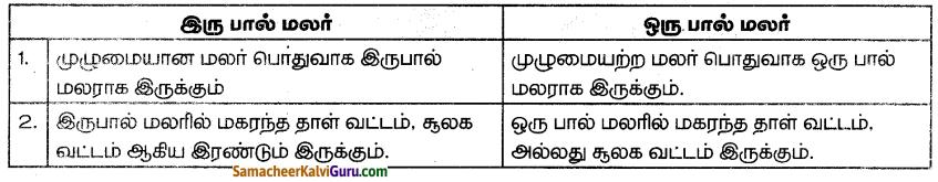 Samacheer Kalvi 7th Science Guide Term 1 Chapter 5 தாவரங்களின் இனப்பெருக்கம் மற்றும் மாற்றுருக்கள் 3