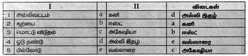 Samacheer Kalvi 7th Science Guide Term 1 Chapter 5 தாவரங்களின் இனப்பெருக்கம் மற்றும் மாற்றுருக்கள் 8
