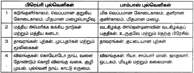 Samacheer Kalvi 7th Social Science Guide Term 3 Geography Chapter 1 கண்டங்களை ஆராய்தல் - வடஅமெரிக்கா மற்றும் தென்அமெரிக்கா 4